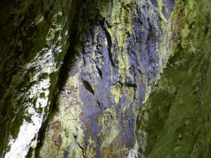 26 Schwarzwald 19